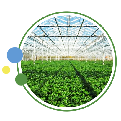 serra per agricoltura